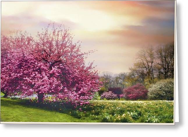 Greeting Card featuring the photograph Cherry Orchard Hill by Jessica Jenney