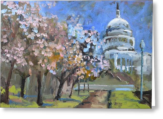 Cherry Tree Blossoms In Washington Dc Greeting Card by Donna Tuten