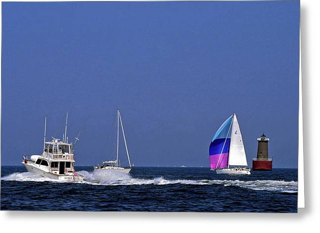 Chesapeake Bay Action Greeting Card by Sally Weigand