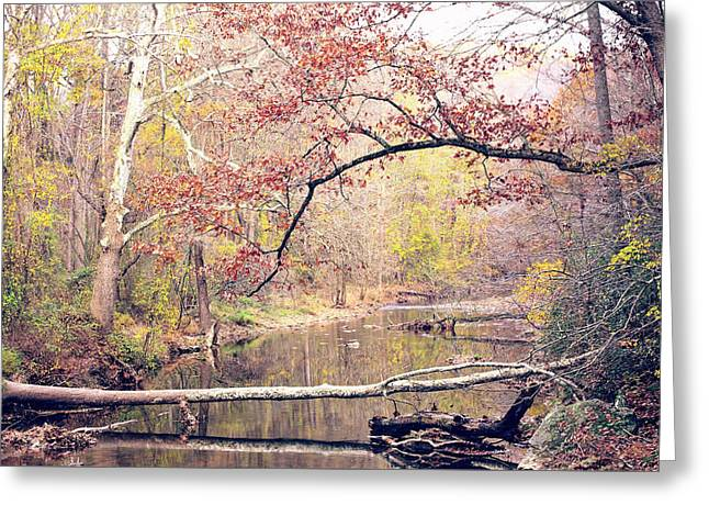 Chester County Creek Greeting Card