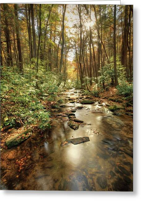 Chester Creek Georgia Greeting Card by Lori Deiter