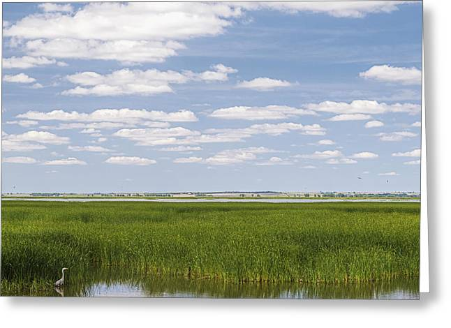 Greeting Card featuring the photograph Cheyenne Bottoms by Rob Graham