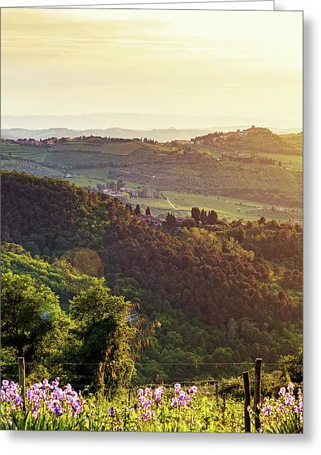 Chianti Italy Rolling Hillside At Sunset Greeting Card