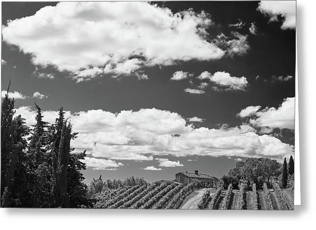 Greeting Card featuring the photograph Chianti Vineyards by Richard Goodrich