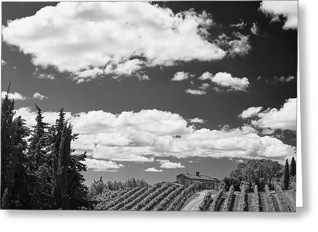 Chianti Vineyards Greeting Card by Richard Goodrich