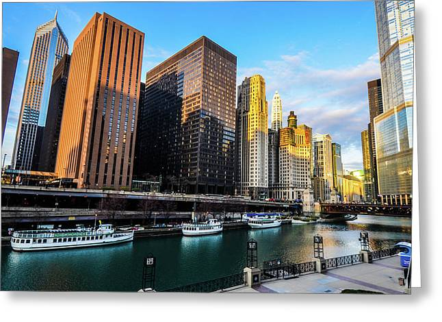 Chicago Navy Pier Greeting Card
