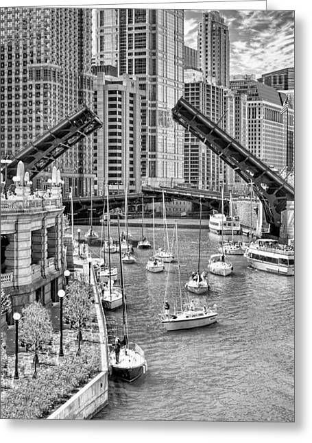 Greeting Card featuring the photograph Chicago River Boat Migration In Black And White by Christopher Arndt