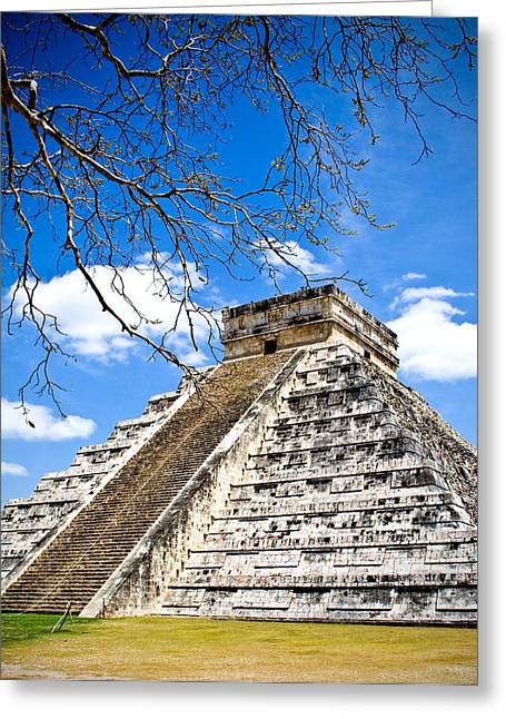 Chichen Itza Greeting Cards - Chichen Itza and Tree Greeting Card by Chris Brannen