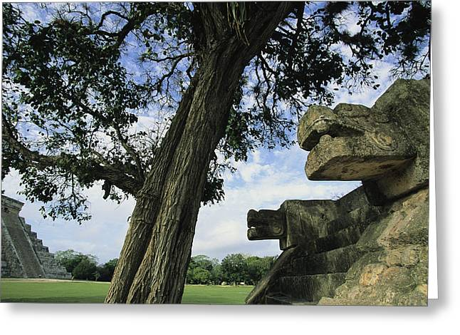 Pre Columbian Architecture And Art Greeting Cards - Chichen Itza Scene Greeting Card by Steve Winter