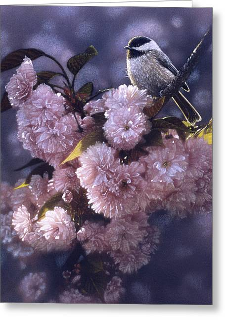 Chickadee - In Spring Pink Greeting Card