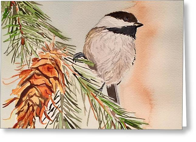 Chickadee In The Pine Greeting Card