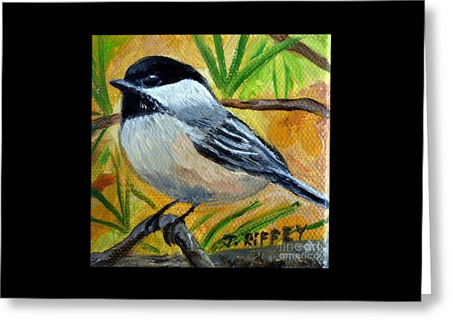 Chickadee In The Pines - Birds Greeting Card
