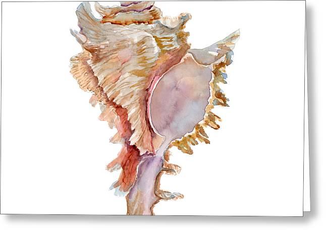 Chicoreus Ramosus Shell Greeting Card