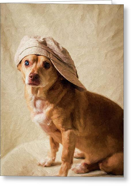 Chihuahua In A Newsboy Hat Greeting Card