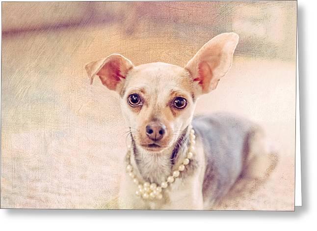 Chihuahua Pet Portrait Greeting Card by Debi Bishop