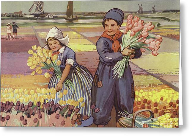 Children Picking Tulips In Holland Greeting Card