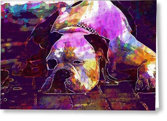 Chill Out Dog Boxer Relax Lazy  Greeting Card