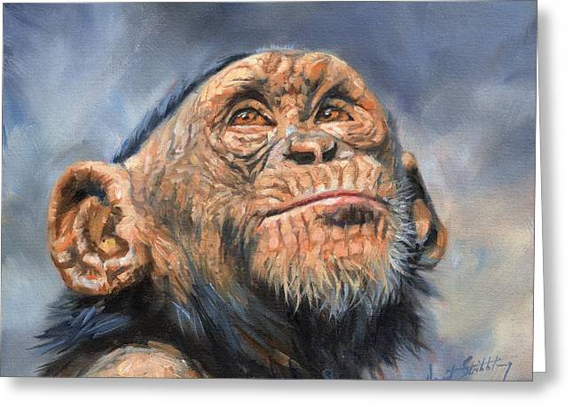Chimp Greeting Card by David Stribbling