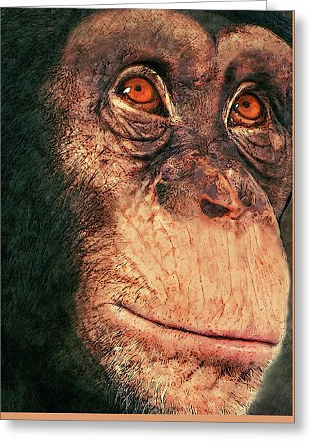 Chimp Greeting Card by Jack Zulli