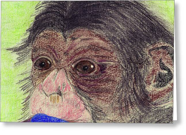 Chimp With Blanket Greeting Card by Julie L Hoddinott