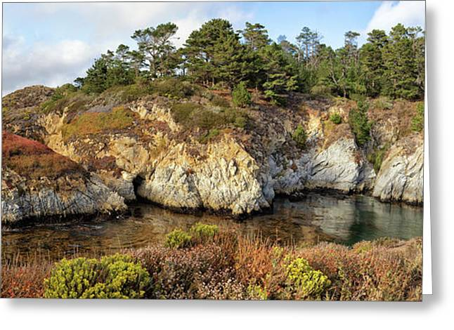 China Cove, Point Lobos Greeting Card by Yair Karelic