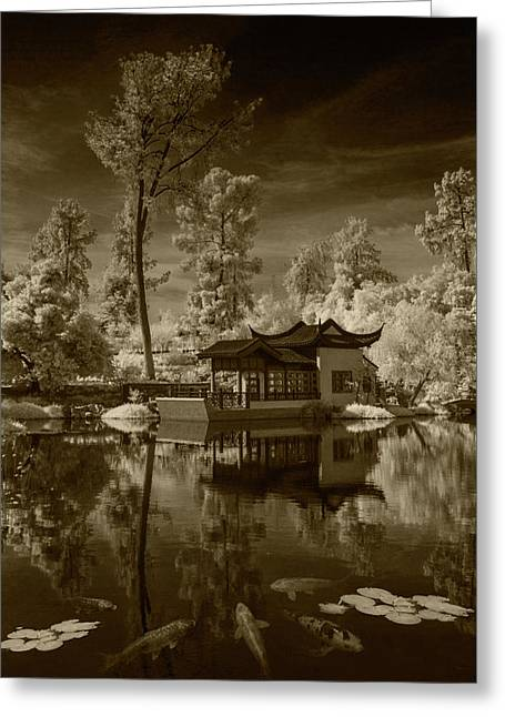 Greeting Card featuring the photograph Chinese Botanical Garden In California With Koi Fish In Sepia Tone by Randall Nyhof