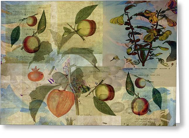 Chinese Lantern Surrounded Greeting Card by Sarah Vernon
