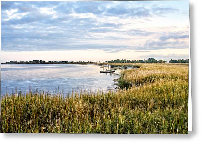 Chisolm Island Shoreline  Greeting Card