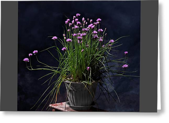 Chives Greeting Card by Don Spenner