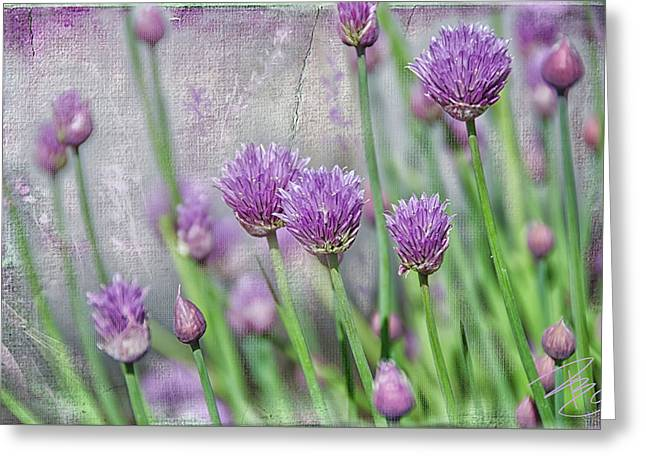 Chives In Texture Greeting Card by Debra Baldwin