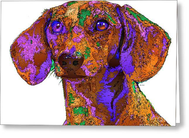 Chloe. Pet Series Greeting Card