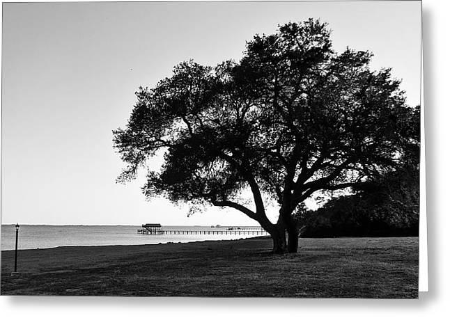 Choctawatchee Bay - Florida Greeting Card by Glenn McCarthy Art and Photography