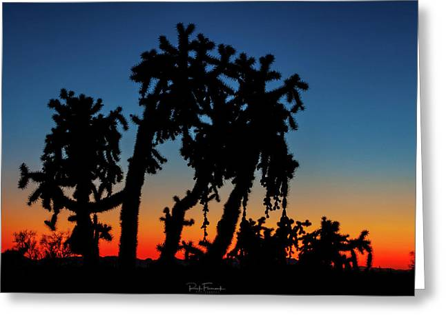 Cholla Silhouettes Greeting Card