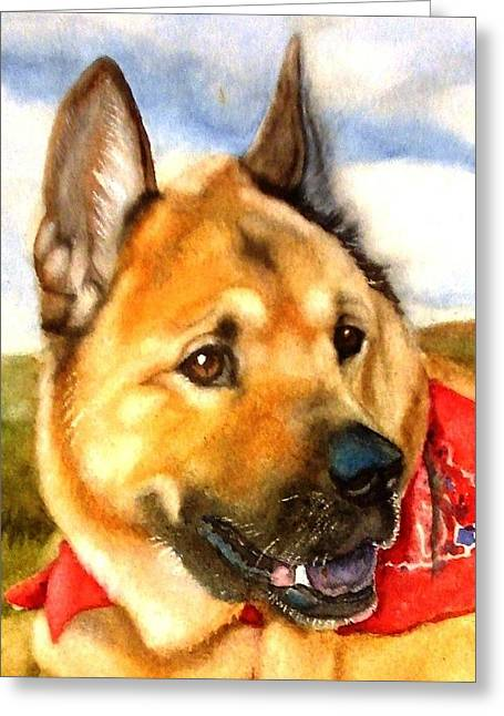Chow Shepherd Mix Greeting Card by Marilyn Jacobson