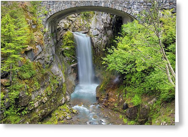 Christine Falls In Mt Rainier National Park Greeting Card