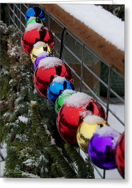 Christmas At Bayview Farm And Garden Greeting Card by Tom Trimbath