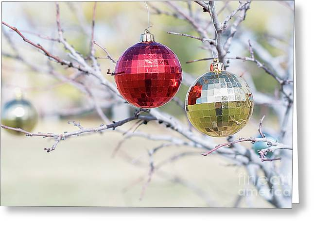Christmas At The Park Greeting Card