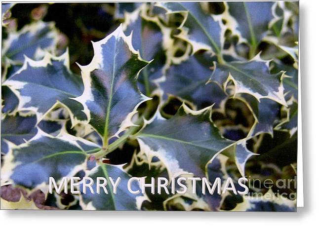 Christmas Card 2 - 2011 Greeting Card by Rod Ismay
