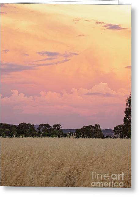 Greeting Card featuring the photograph Christmas Eve In Australia by Linda Lees