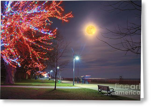Christmas Moon Watch Greeting Card by Charline Xia