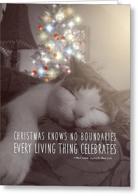 Christmas Nap Quote Greeting Card by JAMART Photography