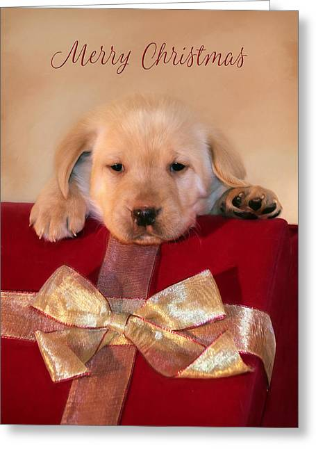 Christmas Puppy Greeting Card by Lori Deiter