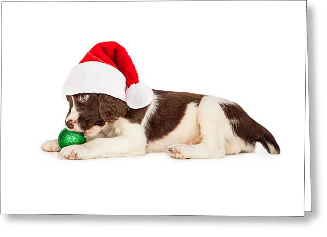Christmas Puppy Santa Hat And Bulb Greeting Card by Susan Schmitz