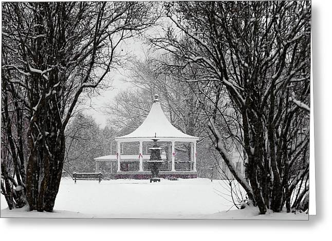 Christmas Season In The Park Greeting Card