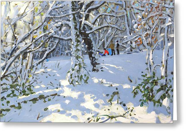 Christmas Sledging In Allestree Woods Greeting Card by Andrew Macara