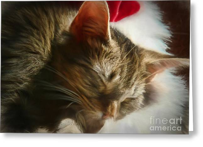 Christmas Slumber Greeting Card by Kelley Freel-Ebner