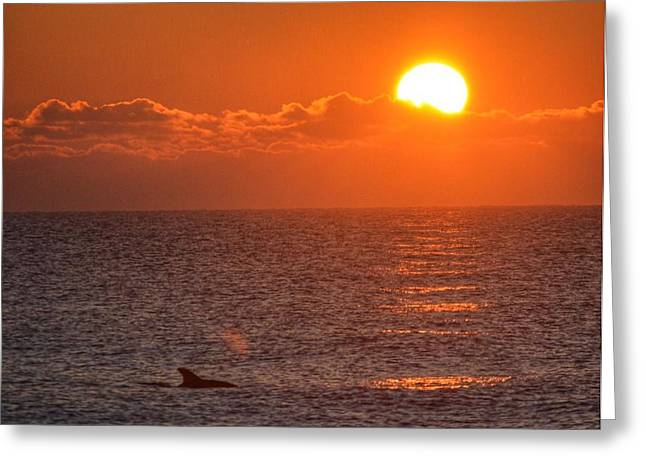 Christmas Sunrise On The Atlantic Ocean Greeting Card by Sumoflam Photography