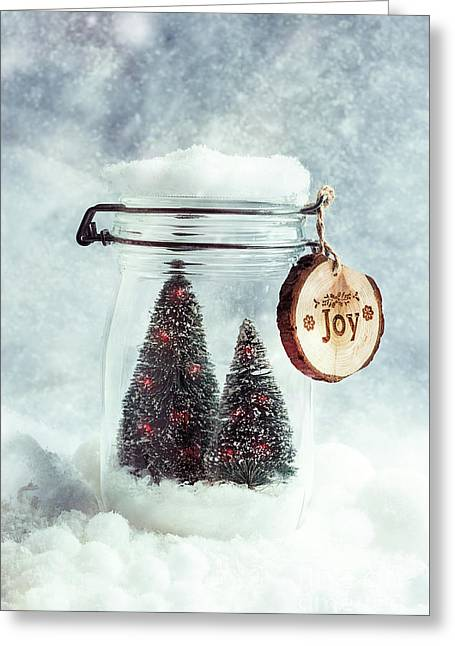 Christmas Tree Snowglobe Greeting Card