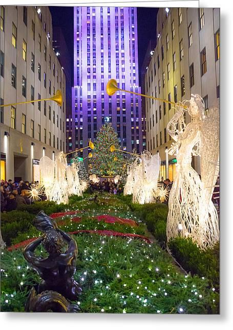 Christmas Tree View 2015 Greeting Card