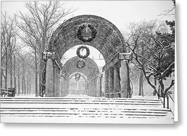 Christopher Columbus Trellis Snowy Day Boston Ma Black And White Greeting Card by Toby McGuire